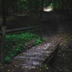 Die Legende der Holzmichl - Dunkelwald