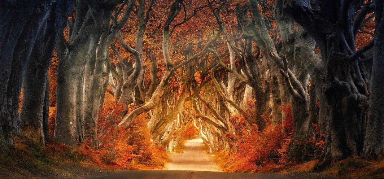 Die Legende der Holzmichl - erstmals gehört
