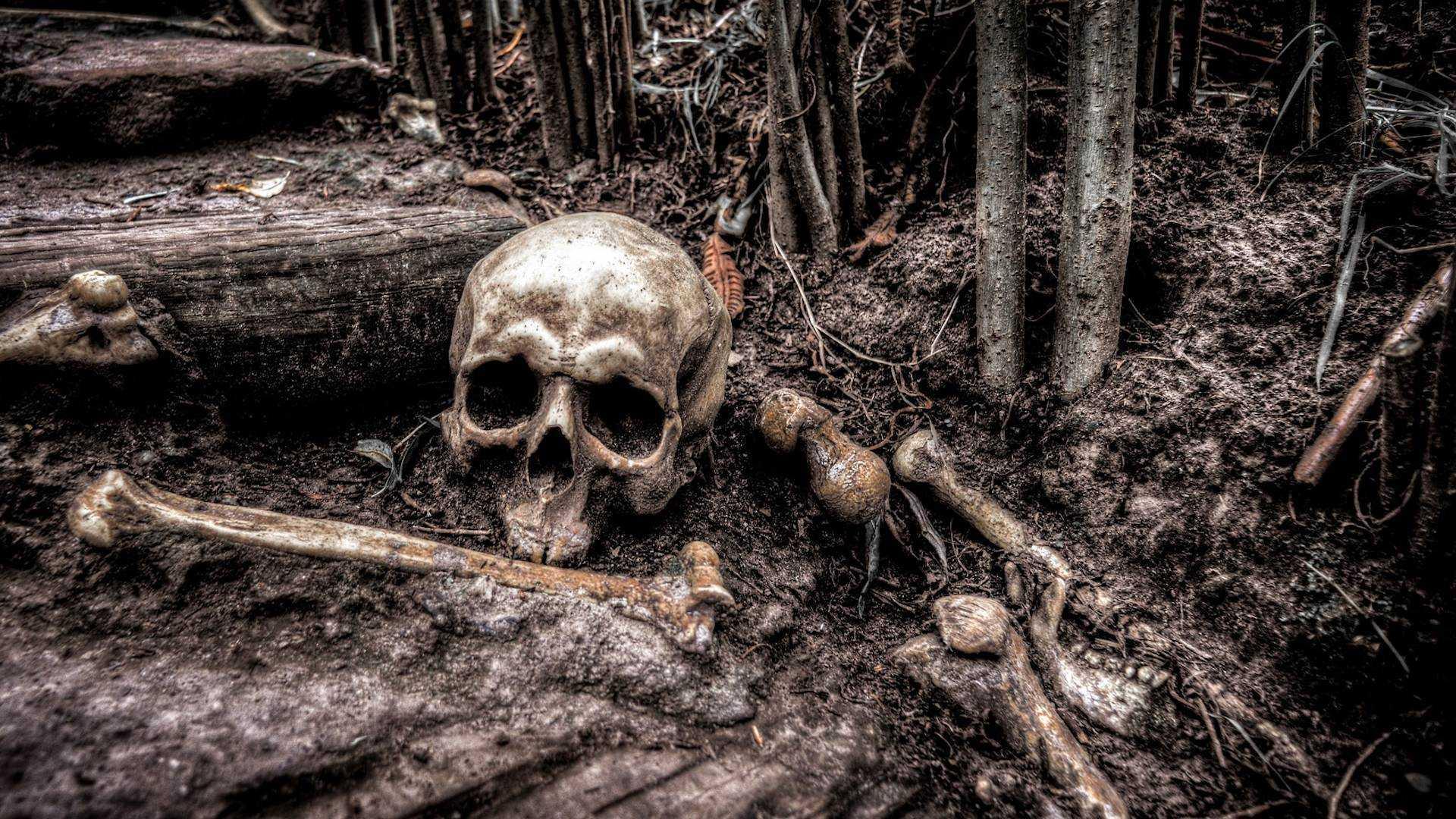Die Legende der Holzmichl - Warnung