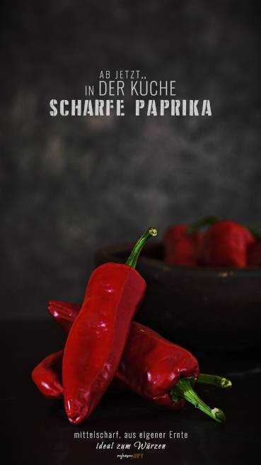 Scharfe Paprika Abbildung 2